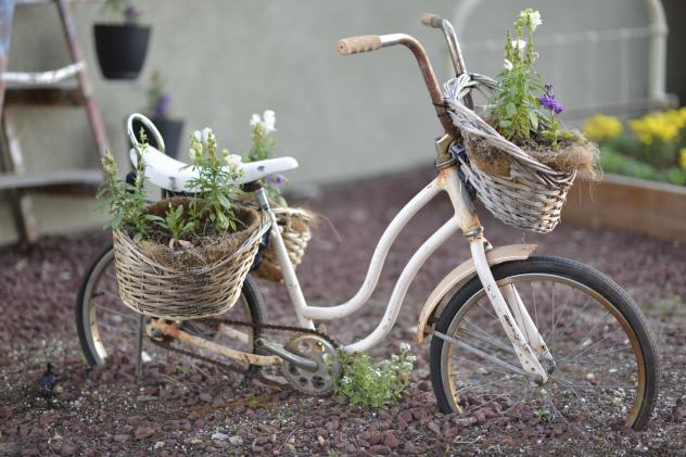 Rusted Bicycle in Garden